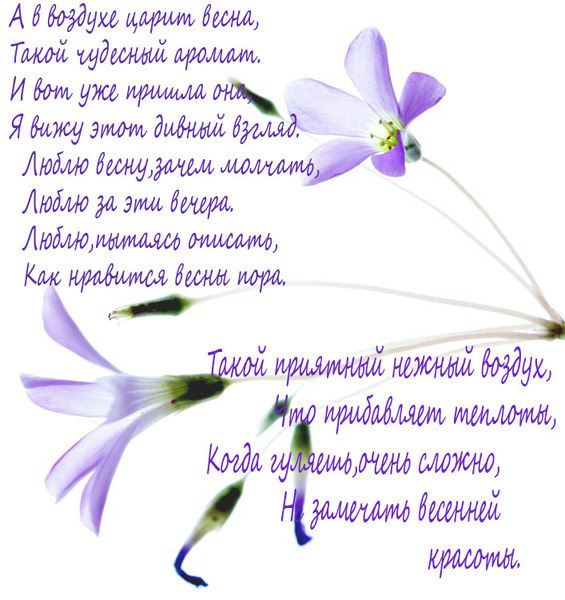 весна  стихи: